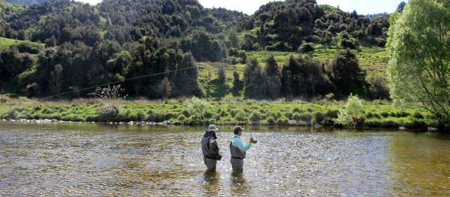 8 Dry Fly Fishing Tips to Use This Fall