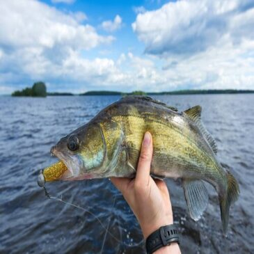 10 Common Fishing Mistakes You Don't Want to Make
