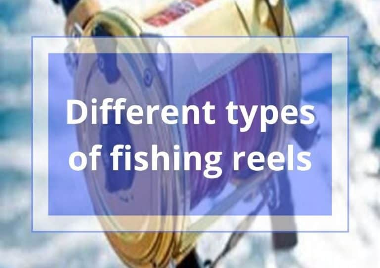10 Types of Fishing Reels | The Complete Guide