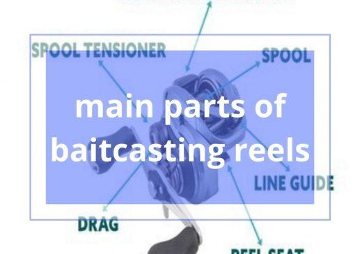 main parts of baitcasting reels