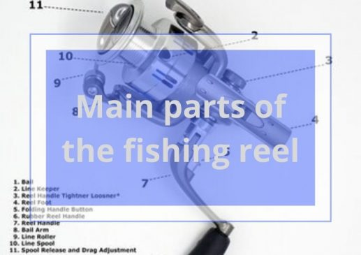 main parts of the fishing reel