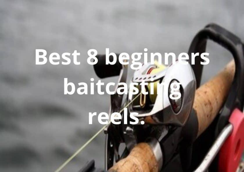 Best 8 Beginners Baitcasting Reels