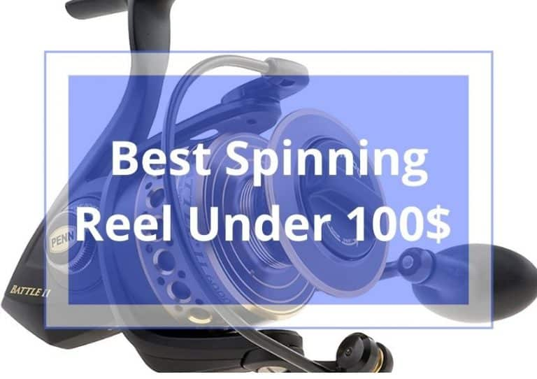10 Best Spinning Reel Under 100$ Review & Buyer's Guide