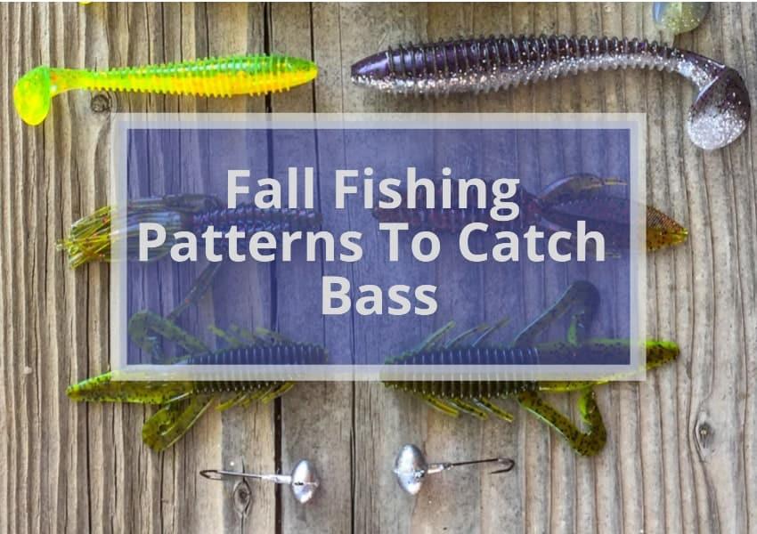 Fall Fishing Patterns To Catch Bass